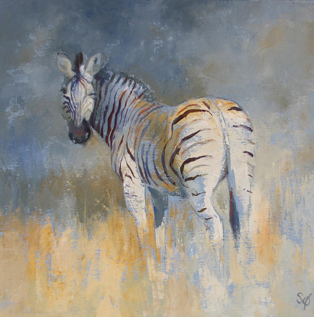 Drôle de zèbre ( Etosha Namibie)