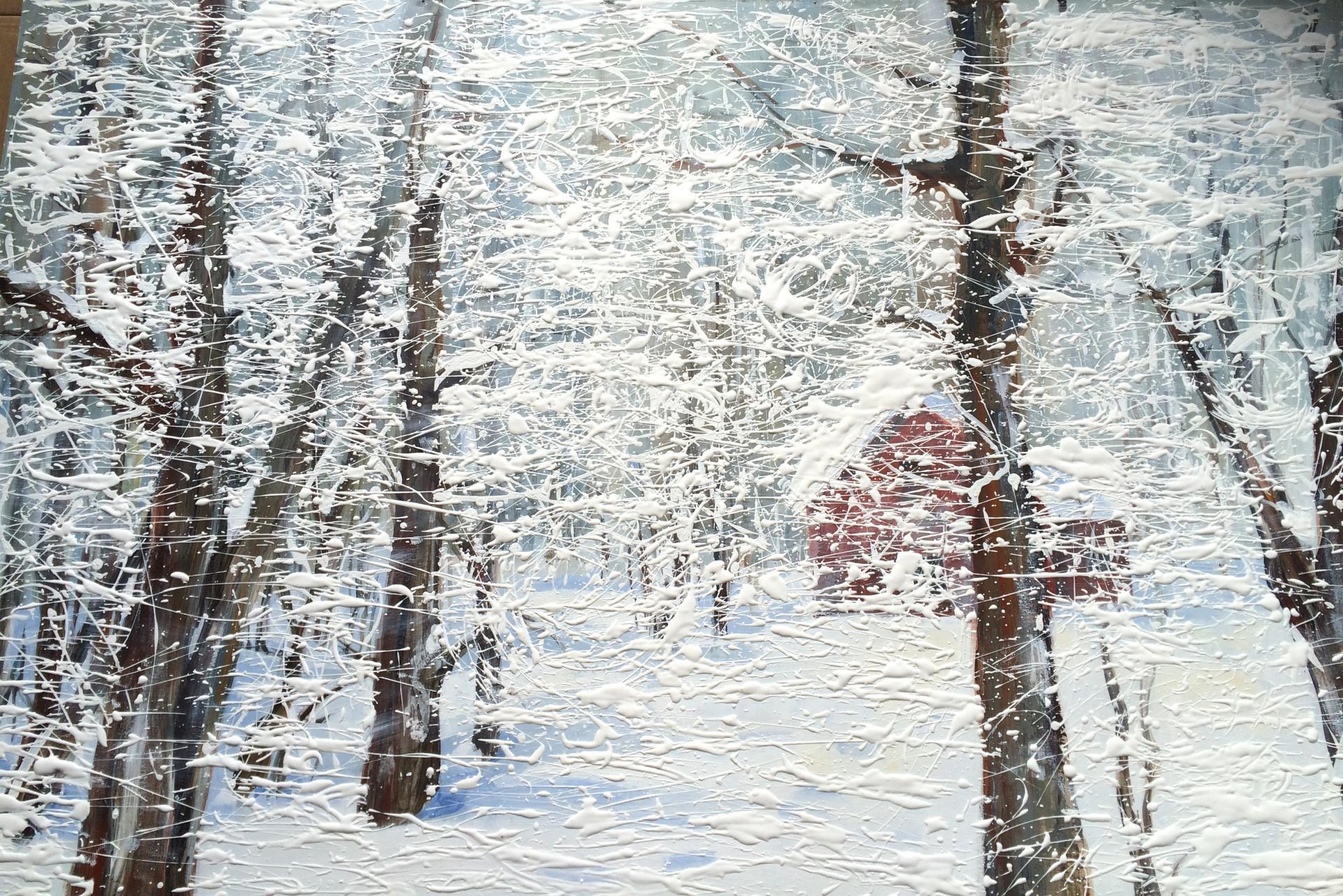 Tempête de neige 1