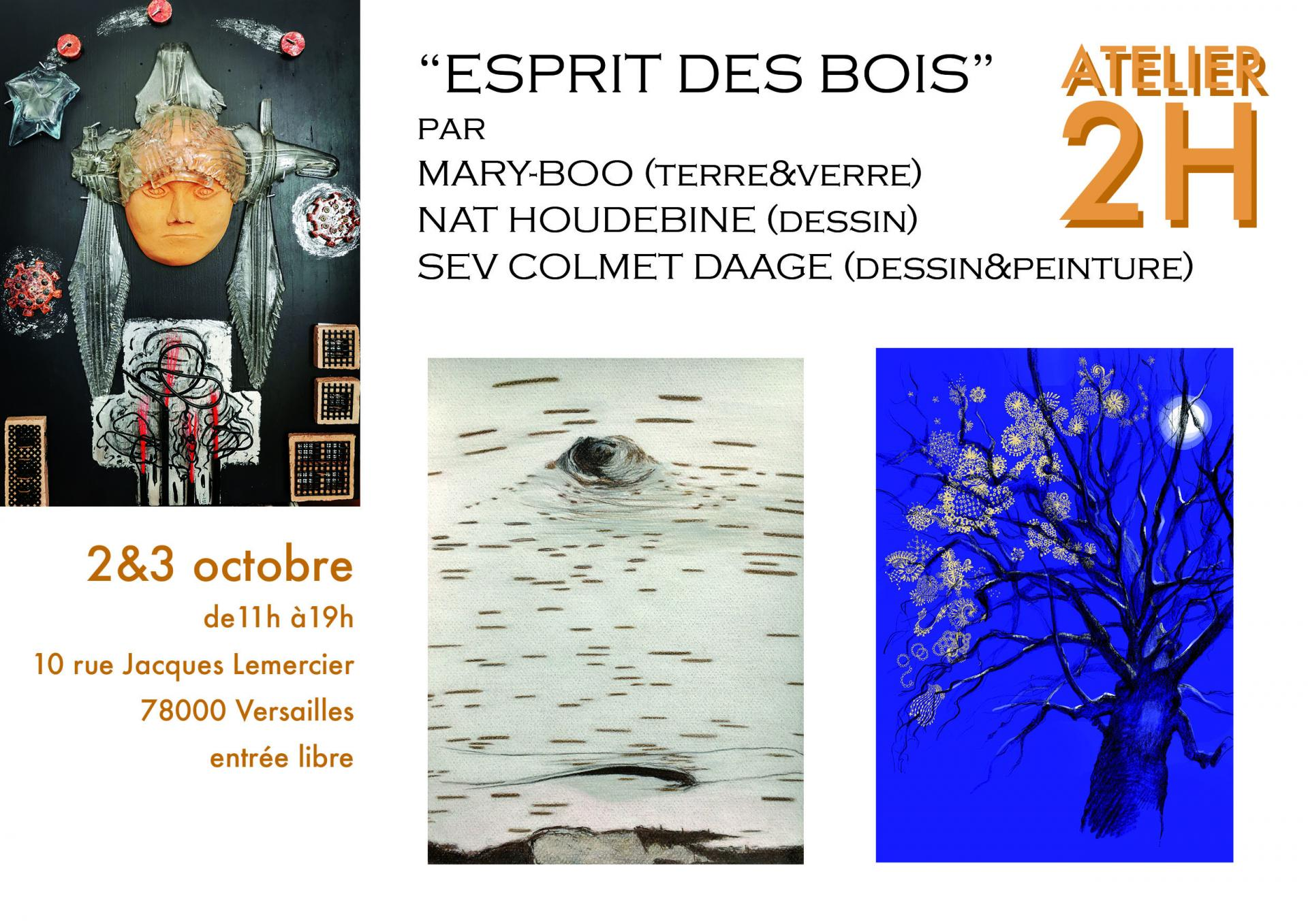 Expos : 2et 3Octobre 2021 à Versailles