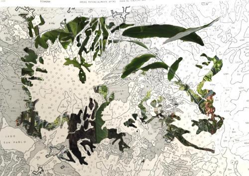 Agrotopographie  2: Résilience